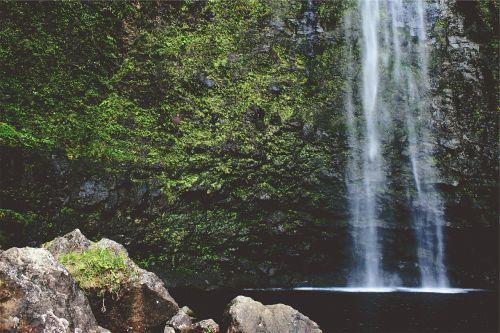 krioklys,kaskados,teka,vaizdingas,vanduo,lauke,šviežias,miškas,kritimas,gamta,natūralus,žalias,samanos,samanos,augmenija