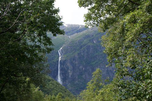 krioklys, miškas, kalnas, natūralus vanduo, natūralus, augmenija, kritimas, vanduo, gamta