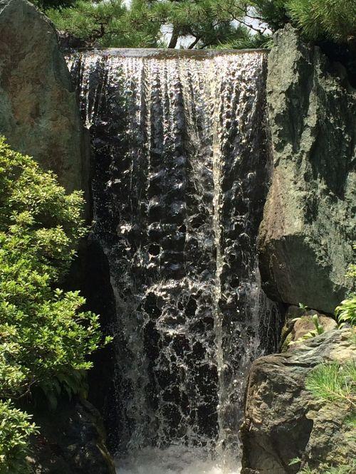 Chicago Botanikos Sodų Krioklys, Mažas Krioklys, Sodas, Krioklys, Parkas, Miškas, Gamta, Kalnas, Vasara, Saulėtas, Botanikos