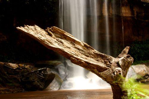kriokliai, shimba, kalvos, miškas, džiunglės, afrika, kenya, gamta, ežeras, upė, vanduo, kriokliai