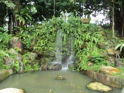 mielas, gamta, medžiai, augalai, lapai, žolė, kriokliai, vanduo, akmuo, sezonas, kriokliai
