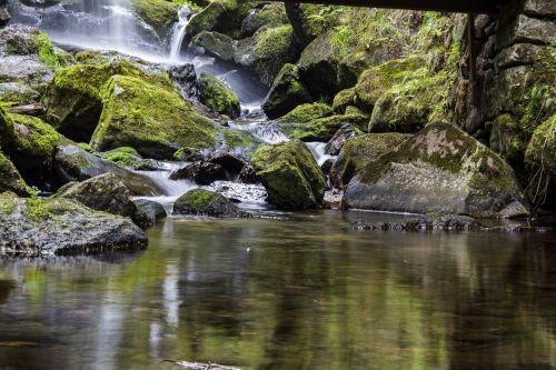 vandenys, gamta, upė, Rokas, krioklys, samanos vandenys, kaskados, kraštovaizdis, kalnas, judėjimas, samanos, akmuo, žalias, bemoost, kranto akmenys, šlapias, Bachas, srautas, vanduo, skystas, vanduo veikia, vandens funkcija, upelis, aišku, tekantys vandenys, lichtreflex, gamtos apsauga, pagrindinis vaizdas, de, Wülfershausen, aplinka, aplinkos apsauga, atsakomybė, apsaugoti, akmeniniai vandenys, gamtos rezervatas, be honoraro mokesčio