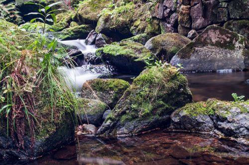 vandenys, gamta, upė, uolos vandenys, krioklys, kaskados, kraštovaizdis, kalnas, judėjimas, samanos, akmuo, žalias, bemoost, kranto akmenys, šlapias, Rokas, Bachas, srautas, vanduo, skystas, vanduo veikia, vandens funkcija, upelis, aišku, tekantys vandenys, lichtreflex, gamtos apsauga, pagrindinis vaizdas, de, Wülfershausen, aplinka, aplinkos apsauga, atsakomybė, apsaugoti, akmeniniai vandenys, gamtos rezervatas, be honoraro mokesčio