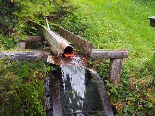 vandens ratas,vanduo,malūnas,Bachas,energija,vandens galia,upė,rotacija,malimo ratas,pasukti,elektros energijos gamyba,ekologiškai,srautas,miškas,gamta,atsinaujinanti energija,statyba,idiliškas,senas,veidrodis