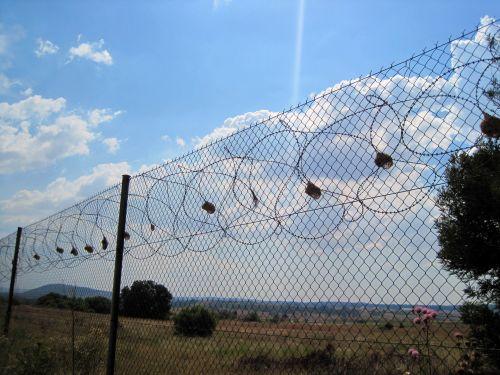 tvora, spygliuotas, saugumas, lizdai, paukščių, audinio lizdai tvoroje