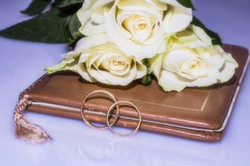 Vestuviniai žiedai,vestuvių knyga,santuokos knyga,rožės,žiedai,auksiniai žiedai,civilinės vestuvės,bendravimas,auksiniai žiedai,meilė,kartu,ryšys,priesaika,Visą laiką,prijungtas,vestuvių dieną,ilgiau dėvimi žiedai,įbrėžimai ant žiedų,kasdieniniai žiedų pėdsakai,amžinai,papuošalai