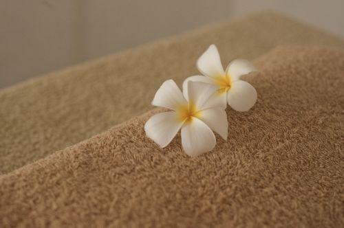 gerovė,grožio centras,masažas