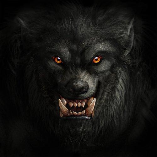 vilkolakis, vilkas, Monster, padaras, žvėris, Helovinas, baugus, akys, iltis, Predator, lubinai, žmogus-vilkas, loup-Garou, lycanthropy, žmogus-vilkas, siaubas, Nemokama iliustracijos