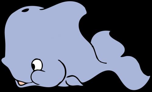 banginis,kūdikio banginis,banginis veršelis,delfinas,jūrų augalija ir gyvūnija,nemokama vektorinė grafika