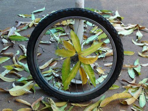ratas,dviratis,pavogtas,padanga,dviračio padanga,lapai,ratlankis,stipinai