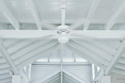 balta,holas,ventiliatorius,lobis,karštas,aušinimas,atmosfera,atšaldyti,atsipalaiduoti,atsipalaidavimas,baras,papludimio Kurortas,kurortas