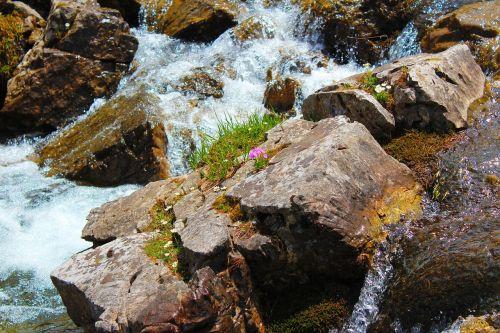 laukiniai,vanduo,gamta,purkšti,upė,putos,banga,strudelas,krioklys,srautas,laukinis squirt,pavojingas,laukinis vanduo,baltas vanduo