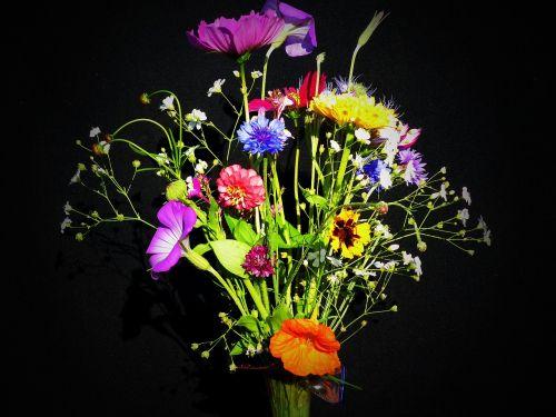 gimtadienio puokštė,laukinės vasaros spalvos,Smailas puokštė,gėlių pieva,puokštė,nasturtium,marigoldas,kardaminas,zinnia,kalnų augalas,kelias,rugiagėlė,cosmea,bitės,kukurūzų kutenas,kūgio gėlė,šviesus,spalvinga,spalva