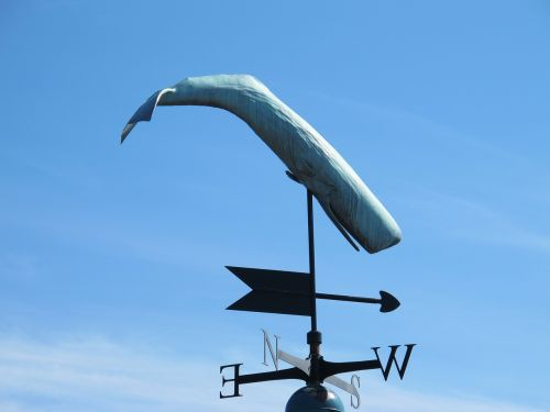 vėjo krypties indikatorius,vėjas,kryptis,dangus,banginis,Šiaurė,į pietus,rytus,vakaruose,oras,oras,meteorologija,indikatorius,ženklas,instrumentas,lauke,prognozė,diena