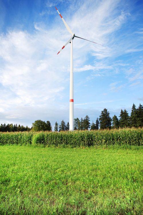 vėjo energija,vėjo energija,pinwheel,elektros energijos gamyba,vėjo parkas,aplinka,sparnas,ekologinė elektros energija,vėjo turbinos,mėlynas,debesys,aplinkosaugos technologijos,energija,dabartinis,Vėjo turbina,dangus,elektra,elektros gamyba,atsinaujinanti energija,ekologija,miškas,laukas,kukurūzų laukas,gamta,Persiųsti,gamtos apsauga,apsauga,ištekliai,energijos gamyba,ekologiškas,energijos revoliucija,aplinkos apsauga,ekologiškai,Žalioji energija,vėjo jėgainė,atsakomybė,rotorius,Alternatyvi energija