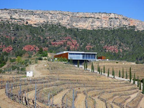 vyno fabrikas,vynuogynai,anksčiau,moderni architektūra,kraštovaizdis,integracija