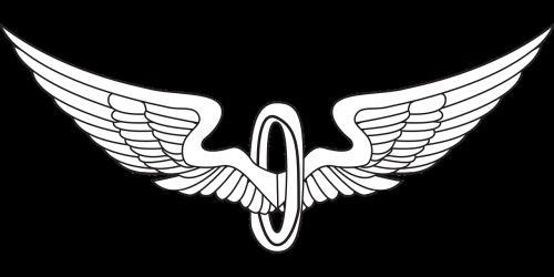 sparnai,paukščių sparnai,erelio sparnai,Angelo sparnai,tatuiruotė,nemokama vektorinė grafika