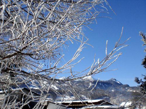 žiema,žiemą,sniegas,kalnai,snieguotas,kaimo žiema,sniego pieva