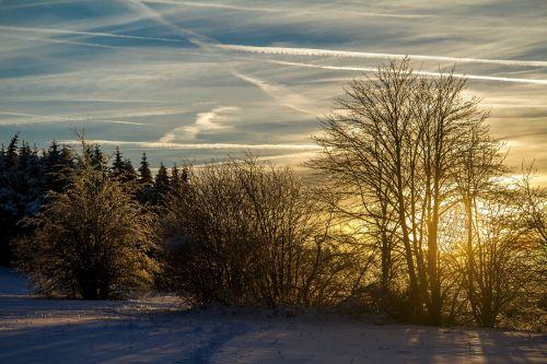 žiema,sniegas,žiemą,Hochrhoen,wasserkuppe,rhön žiema,snieguotas,vakaro saulė