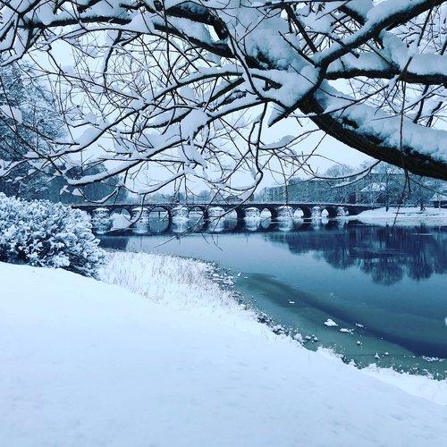 Žiemos,  Sniegas,  Šalto,  Sušaldyti,  Nuo Užšalimo,  Ledas,  Medis,  Ledinis,  Ledinis,  Pobūdį,  Bro,  Akmens Tiltas,  Filialas