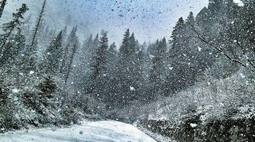 žiema,stiprus sniegas,kelias,sniegas