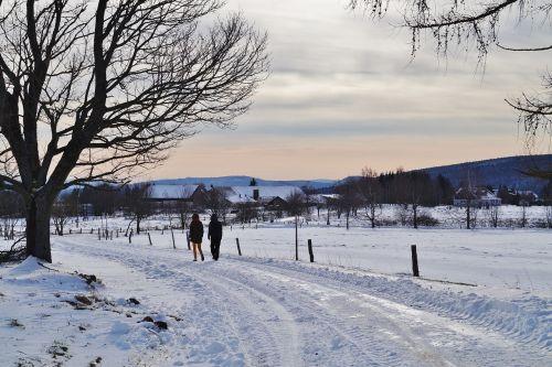 žiema,sniegas,kelias,kelias,snieguotas,šaltis,ledinis,kalnai