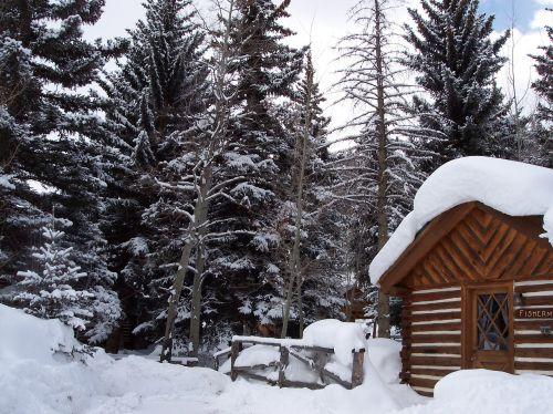 žiemos salonas,Colorado kabina,kalnų slidinėjimas,kajutė,Colorado,žiema,žurnalas,lauke,sniegas,miškas