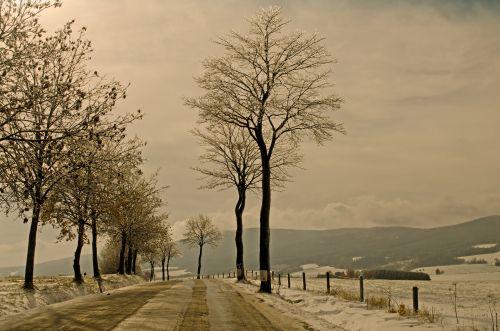 žiema, sezonas, sniegas, kraštovaizdis, kelionė, šventė, fonas, drobė, Čekija & nbsp, respublika, Highland, medžiai, medis, žiemos sezonas