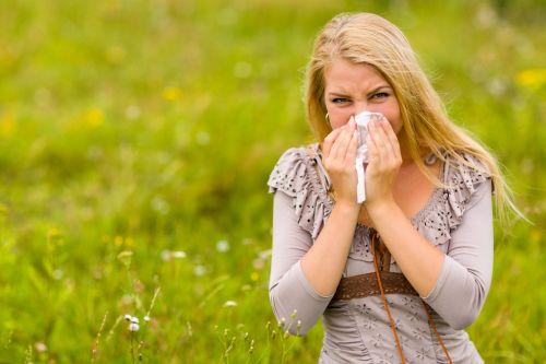 Suaugęs,  Alergija,  Alergijos,  Alergija,  Pūtimas Nas,  Moteris,  Hana & Nbsp,  Uherova,  Nosinė,  Šienas Ir Karščiavimas,  Sveikatos Apsauga,  Žmonės,  Žiedadulkės,  Čiaudėti,  Čiaudėjimas,  Pavasaris,  Audinys,  Blogai,  Moteris,  Moteris Su Šienligės