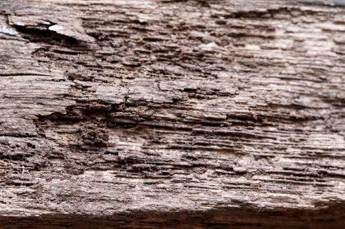mediena,tekstūra,grūdai,medienos tekstūra,medinė tekstūra,medinis,modelis,senas