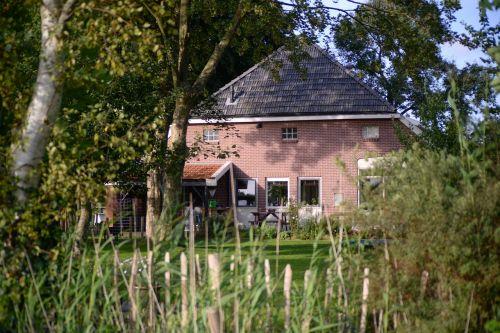 mediena,medis,namas,lauke,žolė,ūkis,olandų,tvora,kiemas,sodas,žalia vasara,galinis kiemas,namai,pastatas,architektūra,gyvenamasis,vasara