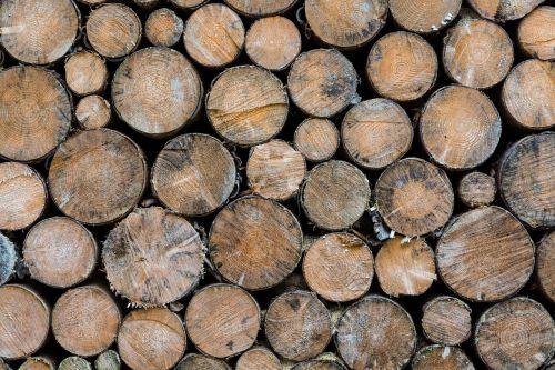 mediena,apie,skersinis,ruda,žiema,šaltas,sukrauti,krūva,gamta,šviesiai ruda,modelis,fonas