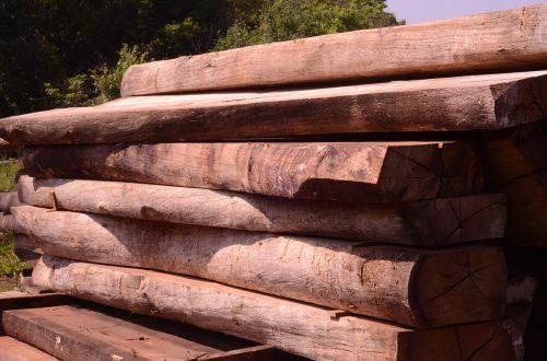 mediena,natūrali mediena,miškininkystė,ąžuolo,medis,kietmedis,medinis,medžiaga,mediena,gamta,dailidės
