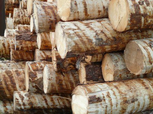 mediena,medžių kamienus,mediena,holzstapel,medžio dirbiniai,nulupta,mediena,žaliava,eglė,pušies mediena