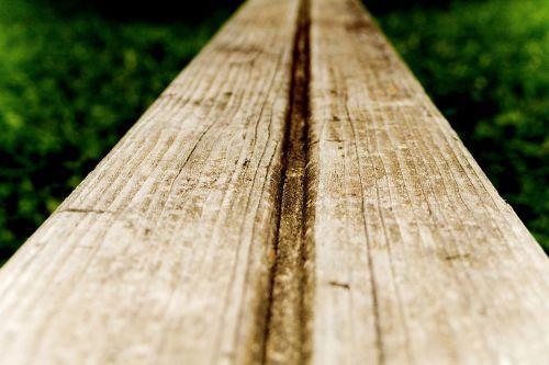 mediena,vis dar,baras,žalias