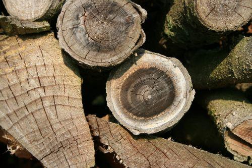 mediena,malkos,saugojimas,šukių pjovimas,sukrauti,medžio medis,timberyard,tekstūra,grūdai,metiniai žiedai,struktūra,ruda,šviesiai ruda
