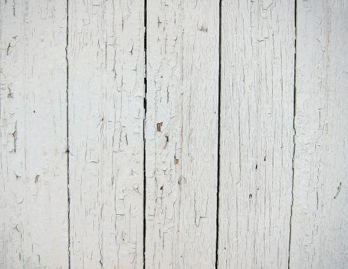 mediena,fonas,balta