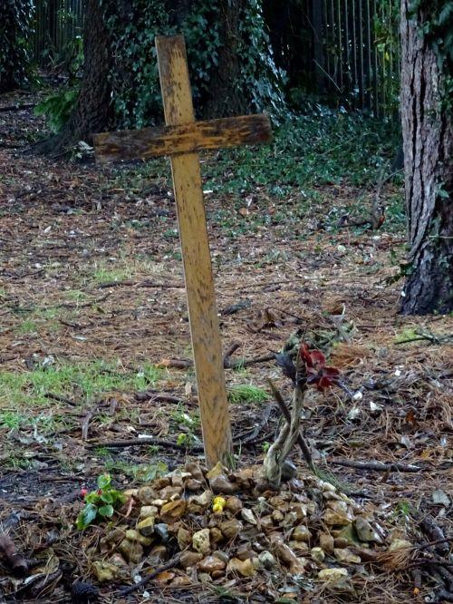 kapinės, kapinėse, krikščionis, krikščionys, krikščionybė, kryžiai, kirsti, kryžius, nukryžiuotas, religija, religinis, religijos, kapas, kapai, kapinės, kapinės, kapas, kapai, kapinės, kapinės, mirtis, miręs, palaidoti, laidojimas, laidotuves, laidotuves, medinis kryžius ant kapinių kapo