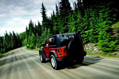 Wrangler,Jeep,medžiai