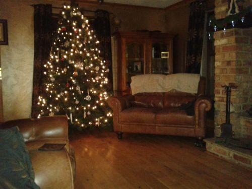 xmas, medis, Kalėdos, dekoracijos, apdaila, milteliai, xmas tree