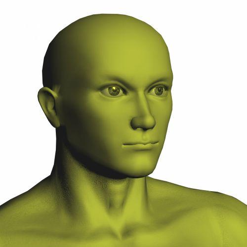 geltona, Patinas, biustas, izoliuotas, balta, fonas, manekenas, Manekenas, vyras, lėlės, skulptūra, galva, geltonas vyriškas biustas