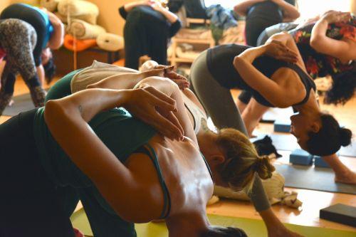 joga,grupė,fitnesas,pratimas,Moteris,kelti,sportuoti,pilatesas,meditacija,laikysena