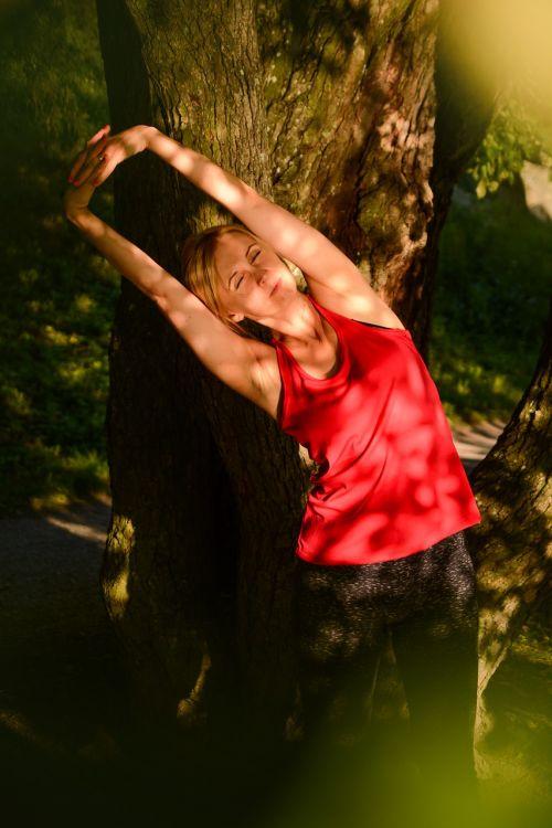 joga,ramus,spaudai,ištempimas,auksinė valanda,gamta,poilsis,moteris,medžiai,taika,poilsis,saulė,kraštovaizdis,nuotrauka nemokama