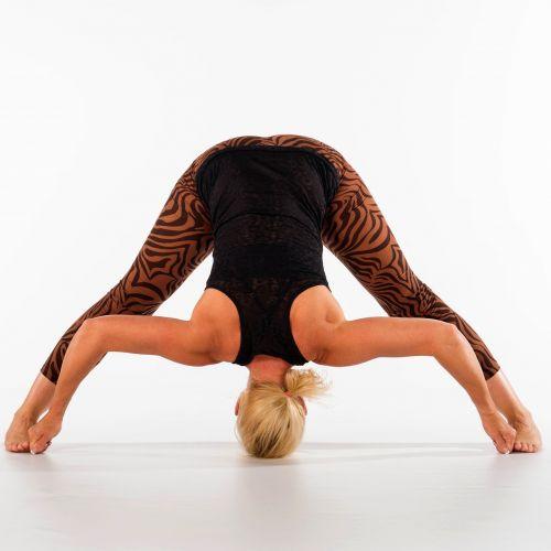 joga,fitnesas,moteris,Ashtanga,akrobatika,sportinis,elastinga,sportas,graži moteris,joga joga,iššūkis,balansas,Jogahouding,lieknas,Asana,sporto mokymas,mokytojo jogas,Annemiek,atsipalaidavimas,jogas,meditacija,vooroverbuiging,prasarita padhottasana,ištempimas