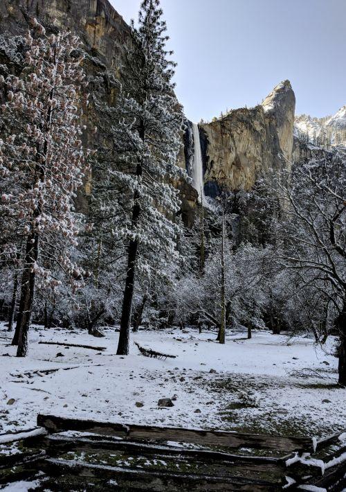 josemitas, yosemitas & nbsp, nacionalinis & nbsp, parkas, kalnas, miškas, medžiai, pušis & nbsp, medžiai, kraštovaizdis, gamta, Kalifornija, Laisvas, uolos, krioklys, viešasis & nbsp, domenas, juoda & nbsp, balta, žiema, sniegas, yosemito sniego kraštovaizdis