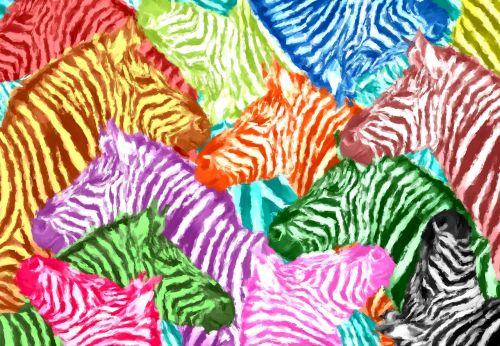 zebra,spalvinga,abstraktus,koliažas,gyvūnai,farbenspiel,menas,spalva,dizainas,zebras