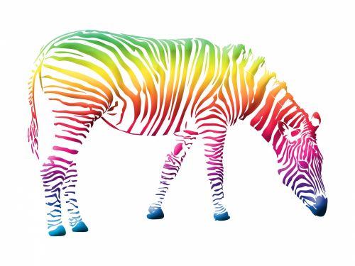 Zebra,  Spalvinga,  Spalvinga,  Vaivorykštė,  Iliustracijos,  Clip & Nbsp,  Menas,  Menas,  Iliustracija,  Figūra,  Kontūrai,  Animl,  Laukiniai,  Laukinė Gamta,  Izoliuotas,  Balta,  Fonas,  Piktograma,  Simbolis,  Scrapbooking,  Laisvas,  Viešasis & Nbsp,  Domenas,  Zebra Spalvinga Paveikslėlis
